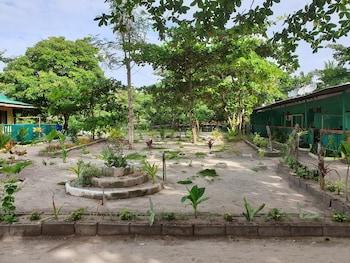 MABUHAY THRESHER DIVE Garden