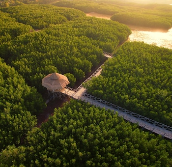 NORTH ZEN VILLAS Aerial View