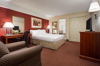 Room, 1 Queen Bed, ADA with Roll in Shower