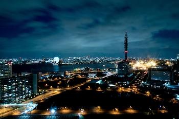 SAKISHIMA COSMO TOWER HOTEL City View