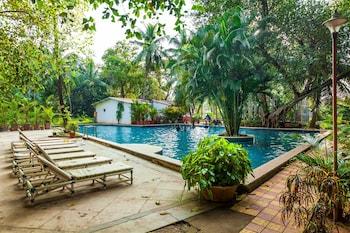 Hotel - OYO Flagship 14391 Calangute Eden Garden