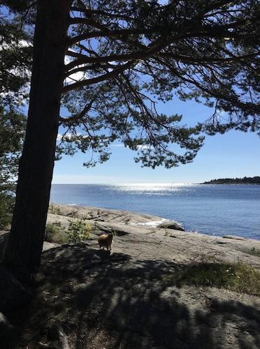Galtströmsgården, Sundsvall
