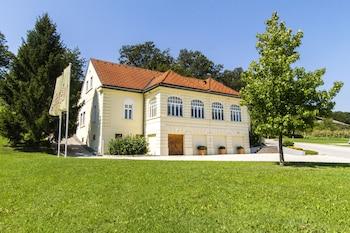 Hotel - Villa Istenič