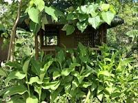 BOHOL GARDEN HOMES