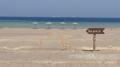 Shark paradise-Adults Only, Marsa 'Alam