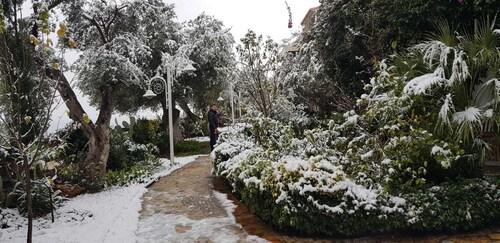 Olives Residence, Vlorës