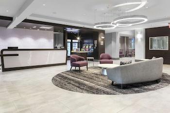 華盛頓哥倫比亞特區拉爾戈希爾頓欣庭飯店 Homewood Suites by Hilton Largo/Washington, D.C.
