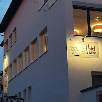 埃斯林根山飯店 Hotel am Berg Esslingen