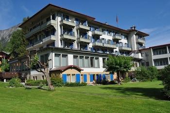 Hotel - Park Hotel Bellevue Lenk