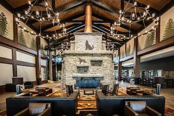 亞利桑那大野狼旅館 Great Wolf Lodge Arizona