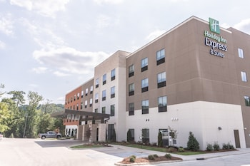 伯明罕霍姆伍德智選假日套房飯店 Holiday Inn Express & Suites Birmingham - Homewood