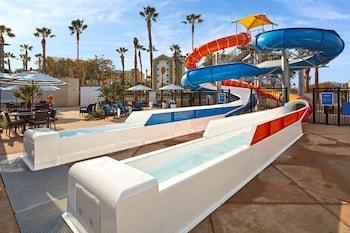安納罕坎布里亞飯店 - 渡假區 Cambria Hotel Anaheim Resort Area