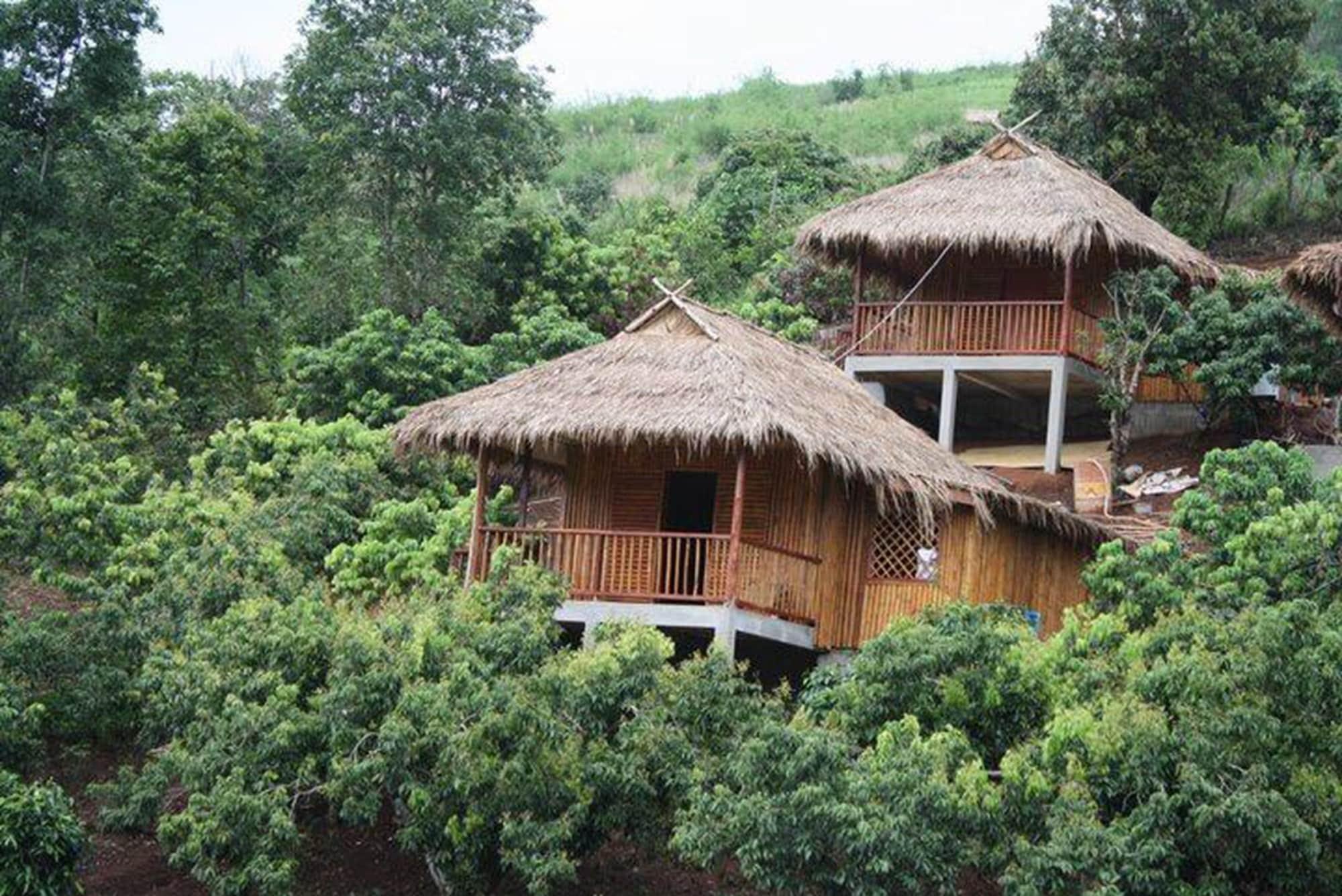 Wawee Strawberry House, Mae Suai