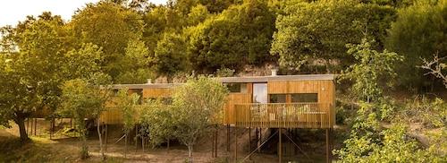 Aloia Nature Alojamiento Forestal, Pontevedra