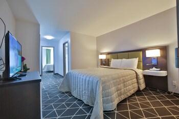 Luxury Büyük Yataklı Tek Kişilik Oda, 2 Büyük (queen) Boy Yatak, Bahçe Manzaralı