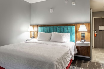 Room, 1 King Bed with Sofa bed, Accessible, Refrigerator & Microwave