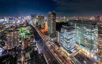 HOTEL REX AKASAKA TOKYO City View from Property