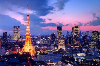HOTEL REX AKASAKA TOKYO City View