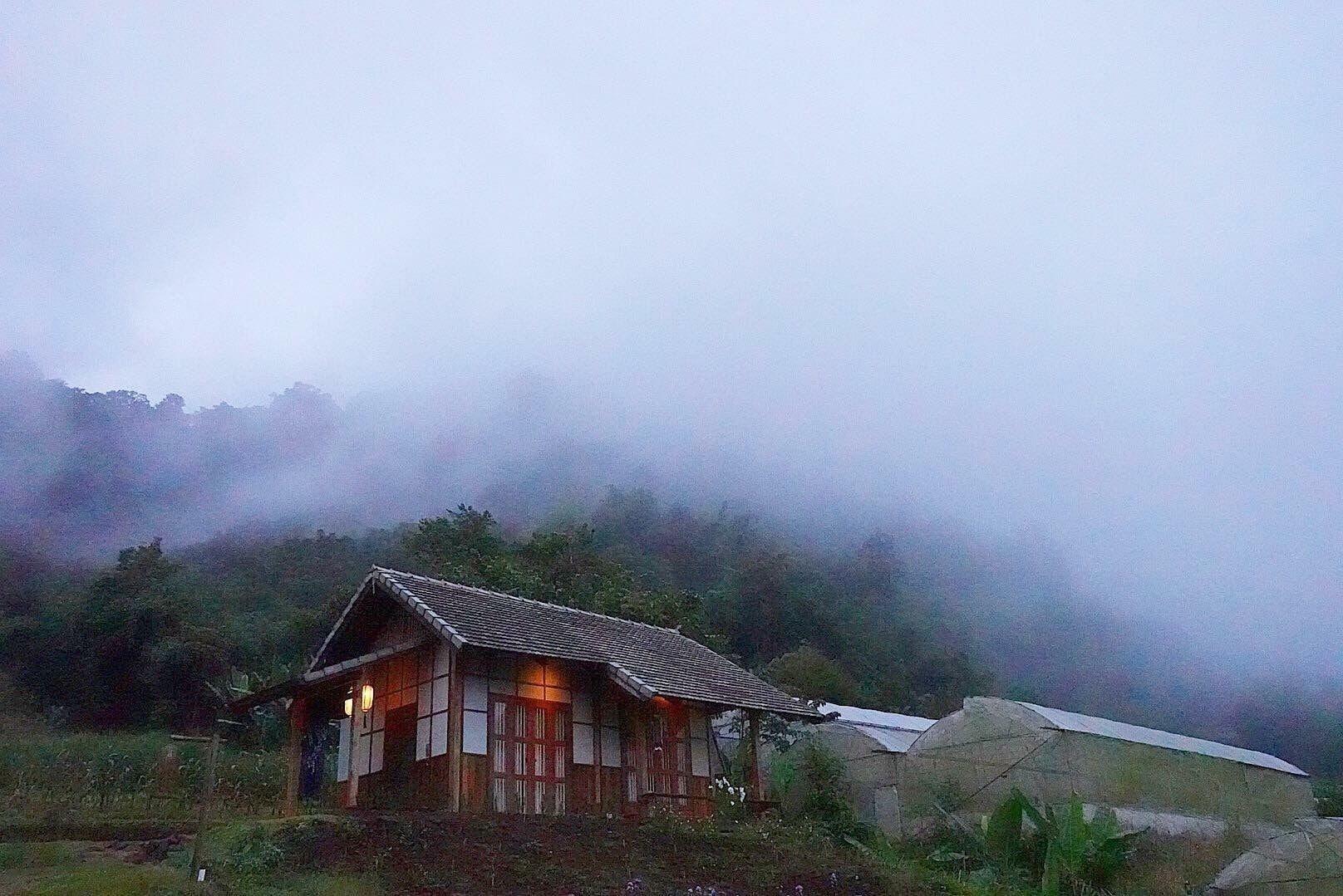 Mori Natural Farm, Mae Rim