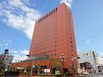 Hotel New Carina