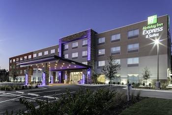 西威明頓 - 醫療園區智選假日套房飯店 Holiday Inn Express & Suites Wilmington West - Medical Park