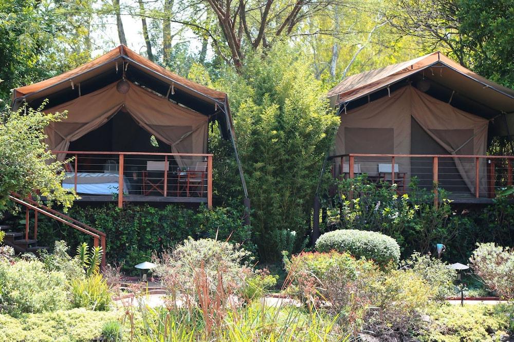Hotel Wildebeest Eco Camp