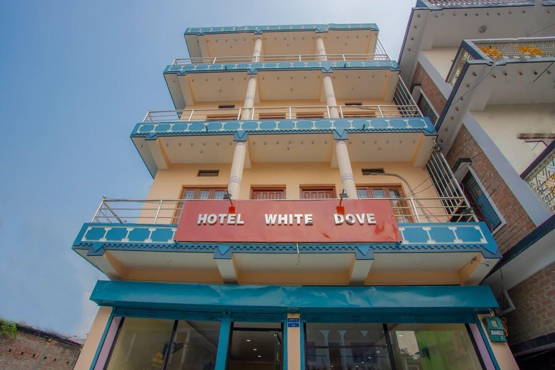 OYO 377 Hotel White Dove, Koshi