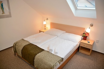 Double or Twin Room (14)