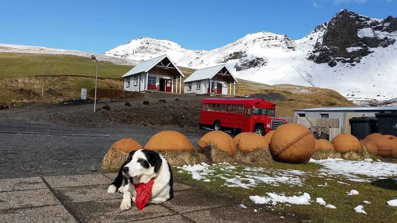 Norður-Vík, Mýrdalshreppur