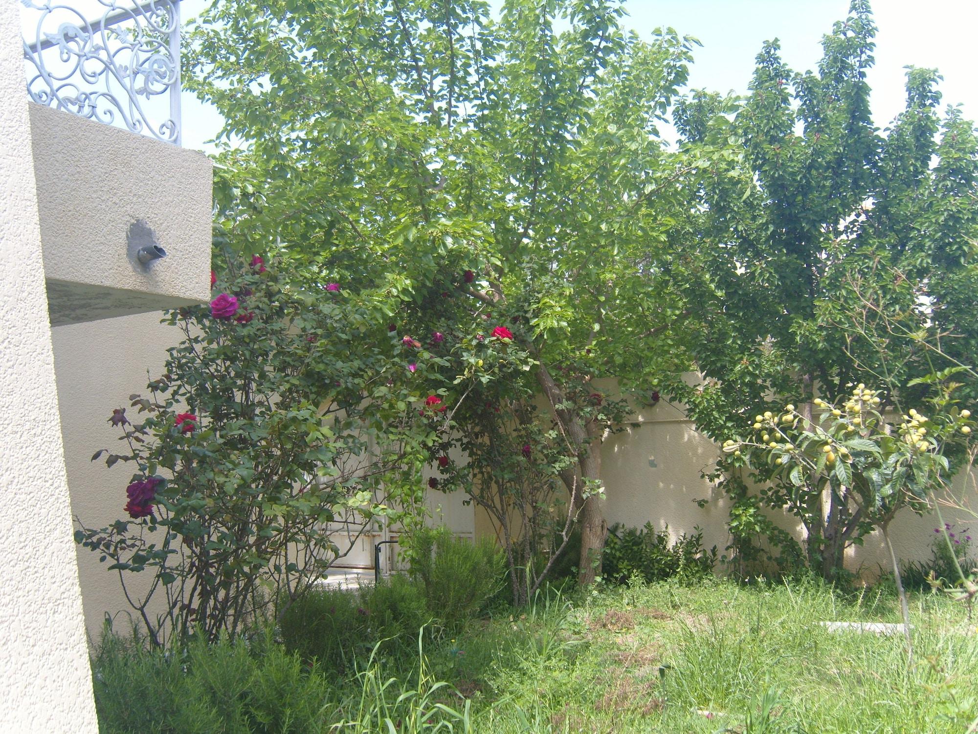 Kantaoui, Hammam Sousse