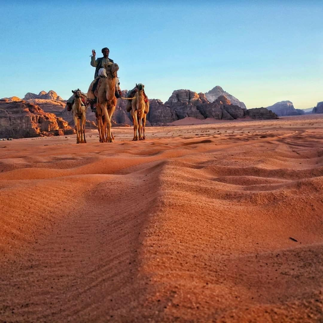 Wadi Rum Rosy Mountains Camp, Quaira