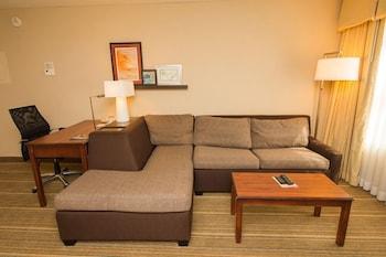 Suite, 1 Queen Bed, Accessible, Non Smoking (One-Bedroom)