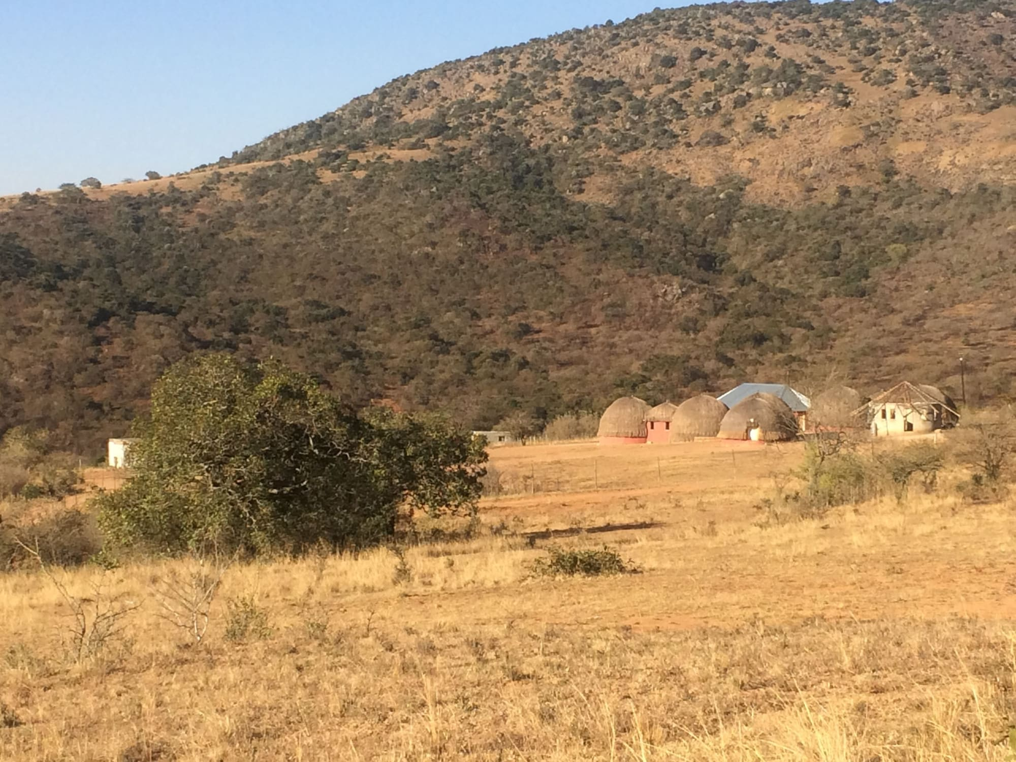 Swazi Dreams Nqabaneni Eco-Volunteering, Ntondozi