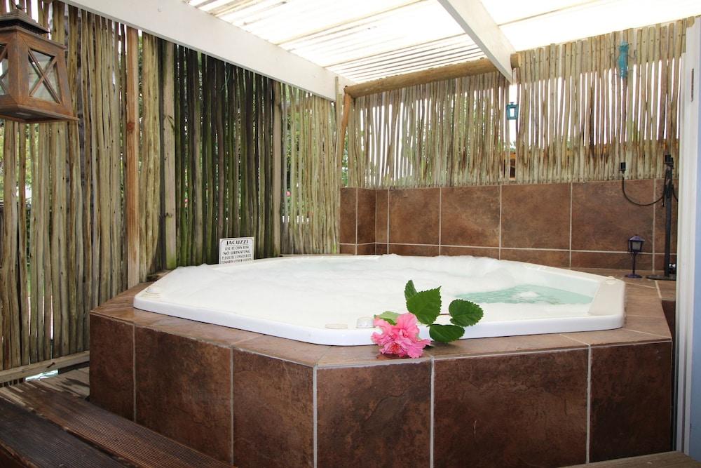 라 보헴 베드 앤드 브렉퍼스트(La Boheme Bed and Breakfast) Hotel Image 37 - Jetted Tub
