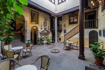 Hotel - Palacio Mariana Pineda Hotel