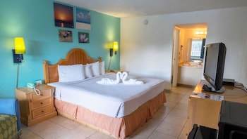 Room, 1 King Bed (Efficiency)
