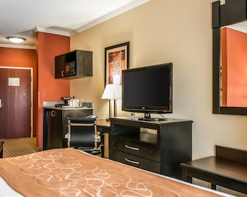Suite, 1 King Bed with Sofa bed, Refrigerator & Microwave