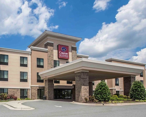 . Comfort Suites Whitsett - Greensboro East