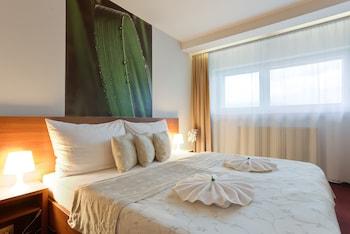 Tek Büyük Yataklı Oda, 1 Yatak Odası