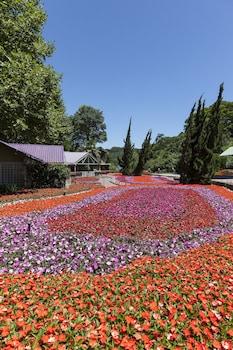 獨特花園飯店 Hotel Unique Garden