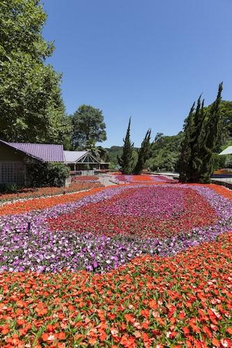 . Hotel Unique Garden