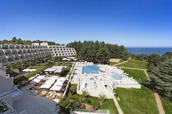 Hotel - Hotel Mediteran Plava Laguna