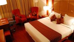Premium Tek Büyük Yataklı Oda, 1 Yatak Odası