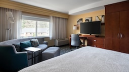 Room, 1 King Bed With Sofa Bed, Mountain View