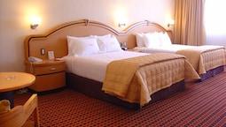 Standard Tek Büyük Yataklı Oda, 2 Büyük (queen) Boy Yatak