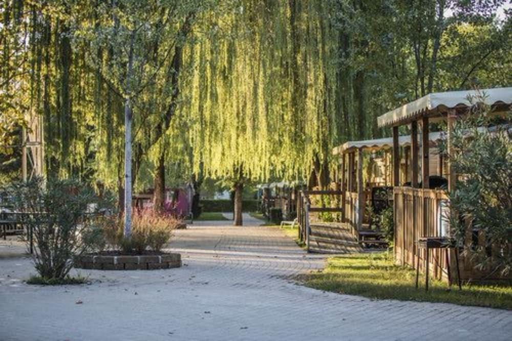 알토민시오 패밀리 파크 - 캠프그라운드(Altomincio Family Park - Campground) Hotel Image 69 - Garden