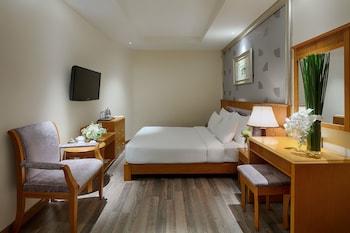Superior Room, 1 Double Bed, No Windows