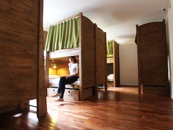 Shared Dormitory, Mixed Dorm (10 Bed)