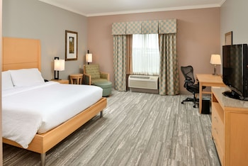 Standard Room, 1 King Bed, Accessible (mobility & Hearing, Roll-in Shower)