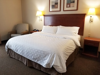 Studio Suite, 1 King Bed, Accessible (Hearing)